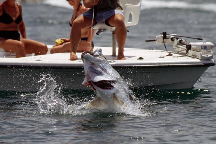 Fishing-Buzios-Brazil-2